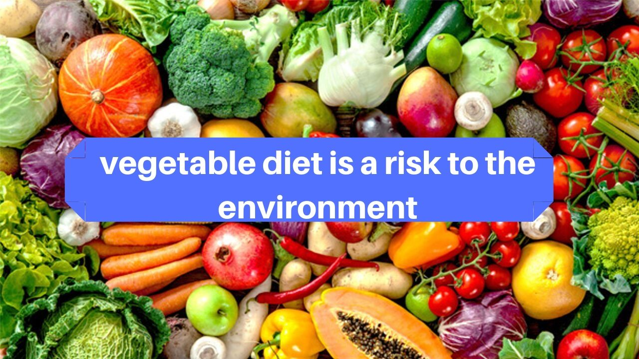 vegetable diet is a risk to the environment